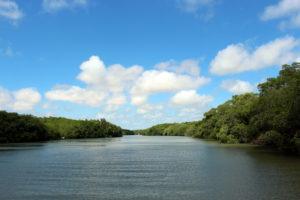 Delta do Parnaíba foto: Matheus Machado